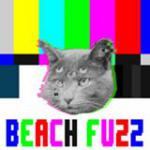 Beach Fuzz, Jackie Zealous, Return To Nagoya