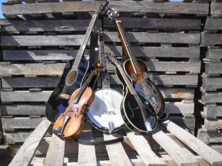 Bluegrass Jam in the Garden