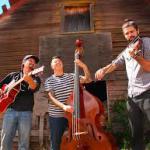 Scratchdog String Band, The Desert Kind