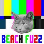 Beach Fuzz, Jackie Zealous, Village of Spaces